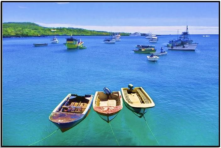 Puerto Ayora – Galapagos