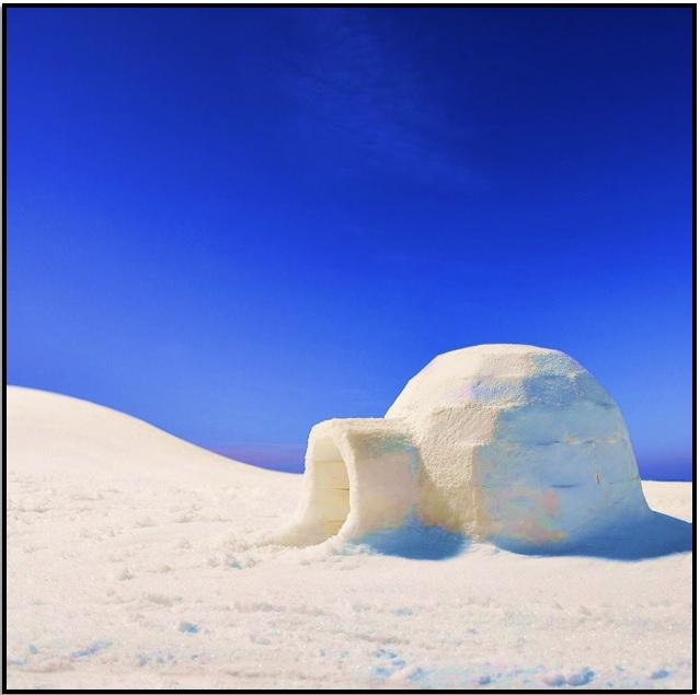 Antartikaya Git