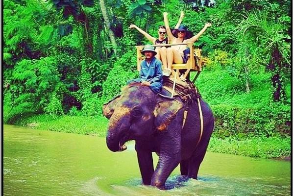 Tayland'da File Bin