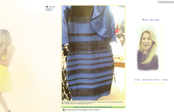 Sizce bu elbise hangi renk?