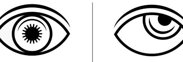Beden dili gözler