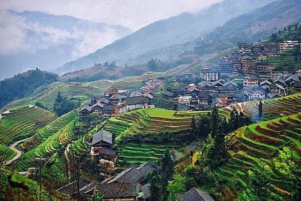 Guilin - Longsheng Pirin Terasları