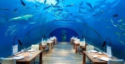 Ithaa Undersea Restaurant, Rangali Adası, Maldivler