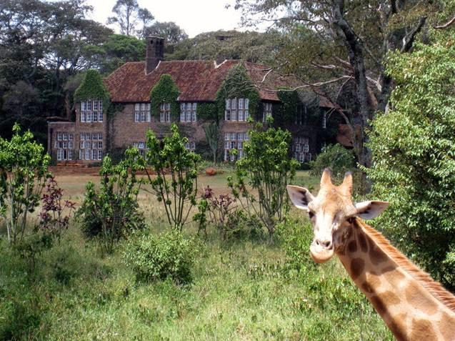 Kenya-Zürafa-Bölgesi
