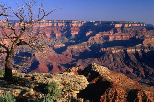 Amerika-Büyük-Kanyon