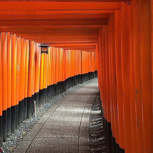 Japonya Kyoto - Fushimi-Inari