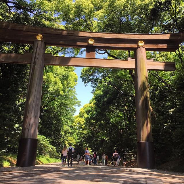 Japonya-Tokyo-Meiji-Tapınağı-2