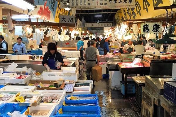 Japonya Tokyo - Tsukiji balık pazarı