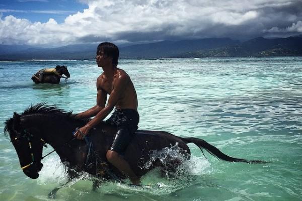 Endonezya - Bali - Gili Adaları - At