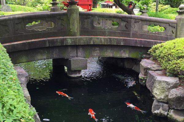 Japonya-Tokyo-Seonso-Ji-Tapınağı-Japon-Bahçesi